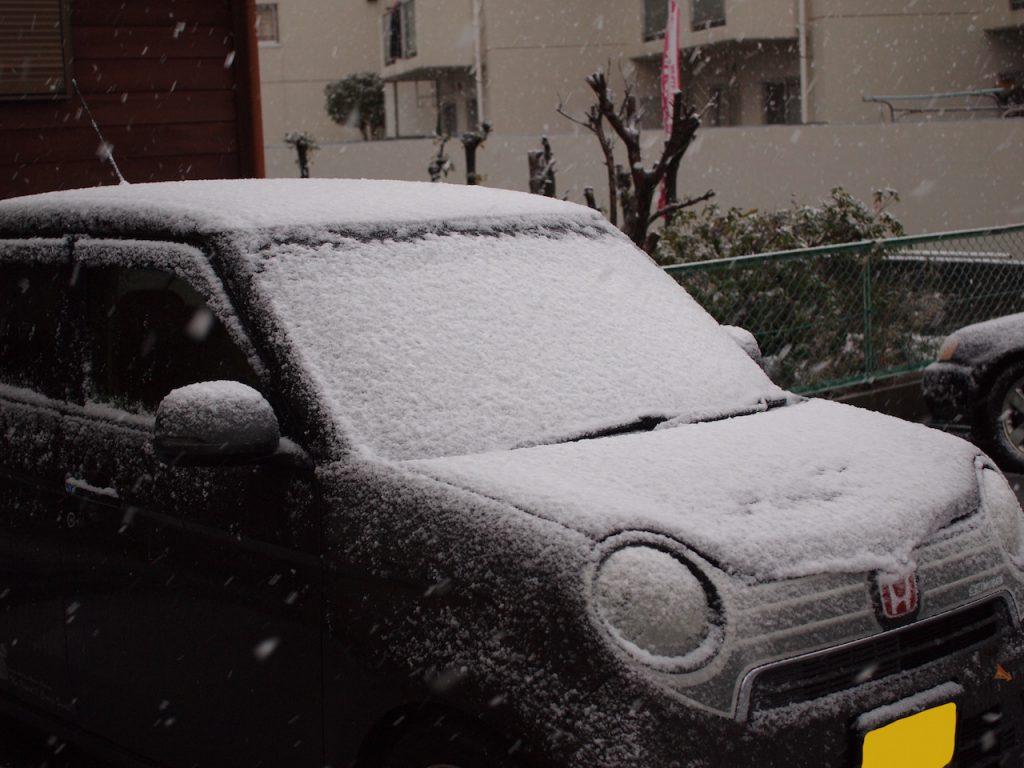 福岡でも雪